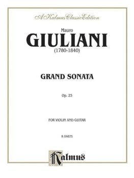 Grand Sonata, Opus 25 (For Violin and Guitar) (AL-00-K04675)